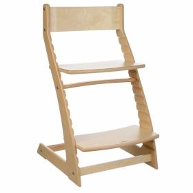 Детский регулируемый стул (растущий стул) ВАСИЛЁК-slim ВН-21Д (не крашенный)