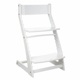 Детский регулируемый растущий стул «ВАСИЛЁК» Slim ВН-21Д (белый)