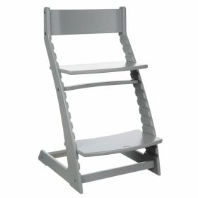 Детский регулируемый растущий стул «ВАСИЛЁК» Slim ВН-21Д (серый)